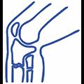 Травматология-Ортопедия