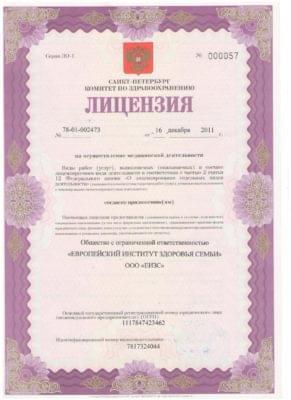 Лицензия 2011 год, 196650 Санкт-Петербург, город Колпино, проспект Ленина, дом 50, лит. А, пом. 3-Н